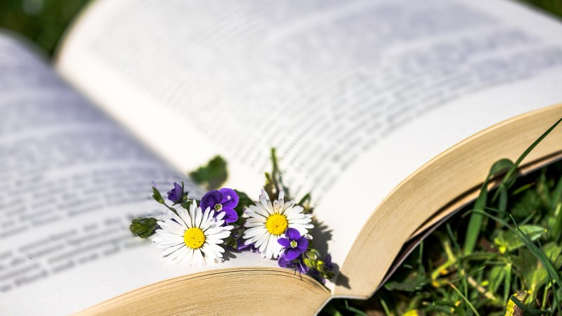 Join this year's Spring Scavenger Hunt for Young Adult Readers!